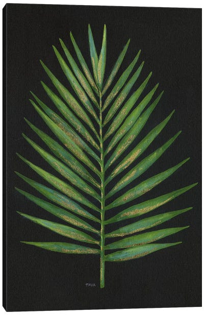 Midnight Palm Canvas Art Print