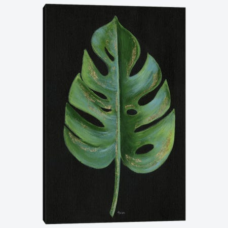Midnight Philodendron Canvas Print #TAV54} by Tava Studios Canvas Art