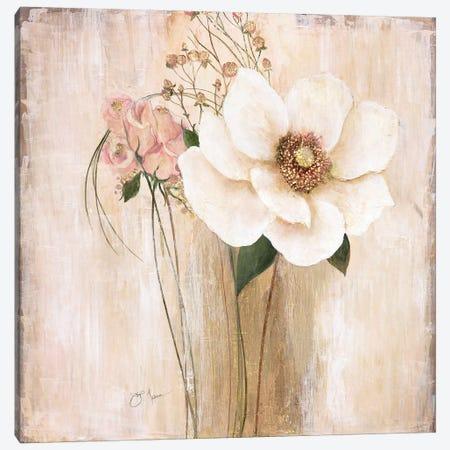 Venetian Beauties Canvas Print #TAV63} by Tava Studios Canvas Wall Art