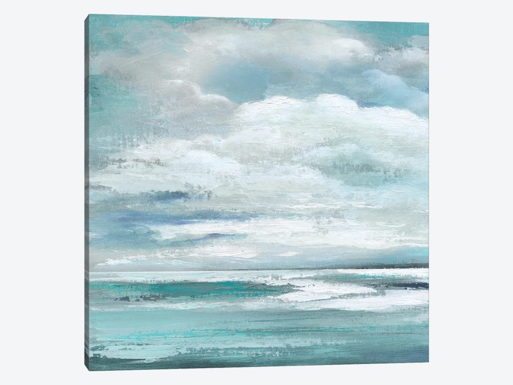 Billowing Clouds I by Tava Studios 1-piece Canvas Art