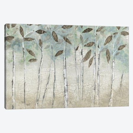 Rain Soft Woods 3-Piece Canvas #TAV83} by Tava Studios Canvas Art