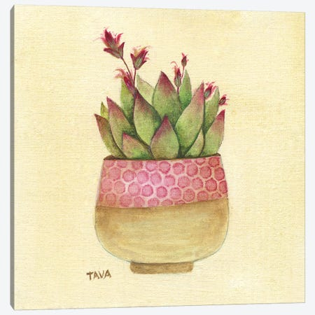 Flowering Succulent I Canvas Print #TAV96} by Tava Studios Canvas Art
