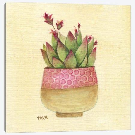 Flowering Succulent I Canvas Print #TAV96} by Tava Studios Canvas Art