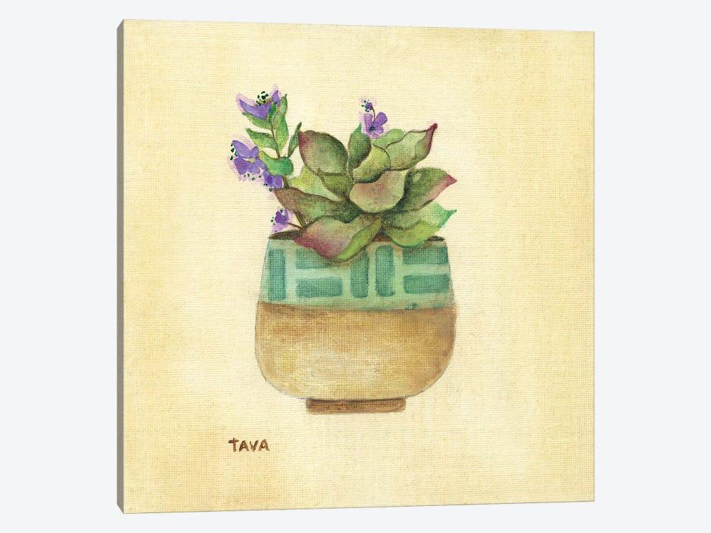 Flowering Succulent II by Tava Studios 1-piece Art Print