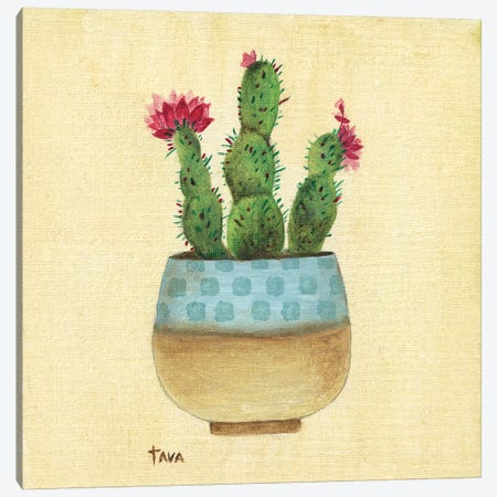 Flowering Succulent III Canvas Print #TAV98} by Tava Studios Canvas Art Print