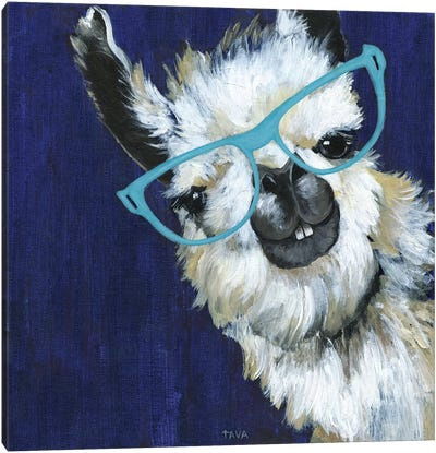 Gentleman Llama Canvas Art Print