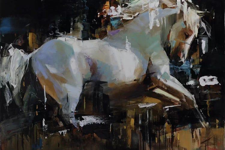 Canvas