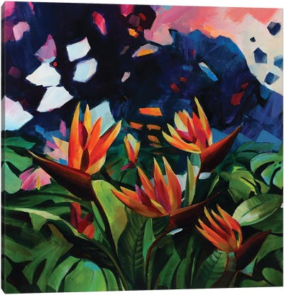 Unknown World Ii Canvas Art Print