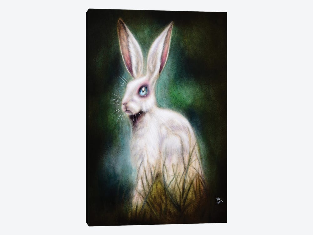 The Hare by Tiago Azevedo 1-piece Canvas Wall Art