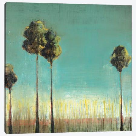 Santa Monica Canvas Print #TBU100} by Terri Burris Canvas Art