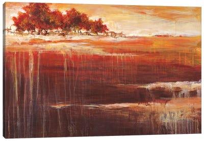 Sienna Setting  Canvas Art Print