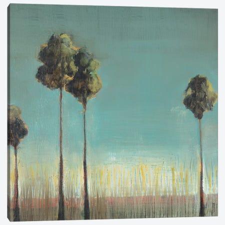 Santa Monica Canvas Print #TBU10} by Terri Burris Canvas Art