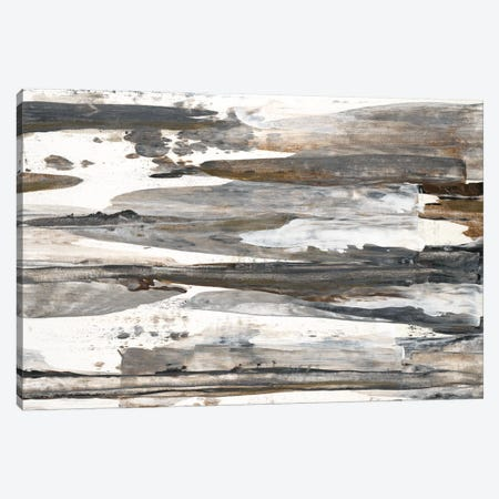Desert Rock I Canvas Print #TBU12} by Terri Burris Canvas Artwork