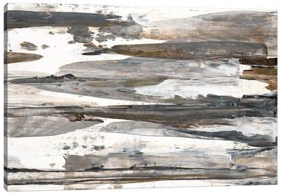 Desert Rock I Canvas Art Print