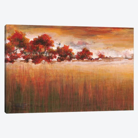 Into The Woods Canvas Print #TBU18} by Terri Burris Canvas Wall Art