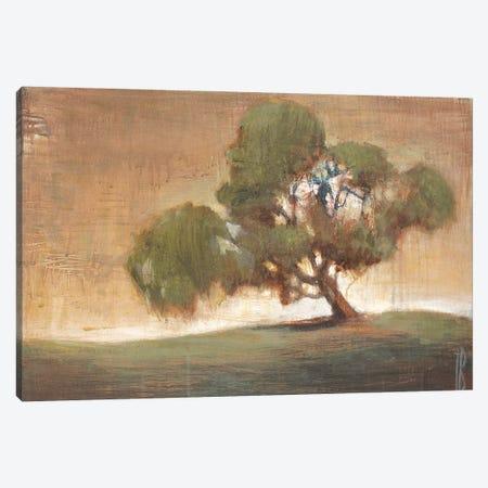 A Peaceful Spot Canvas Print #TBU24} by Terri Burris Canvas Artwork