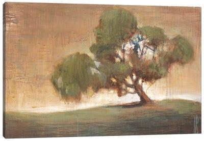 A Peaceful Spot Canvas Art Print