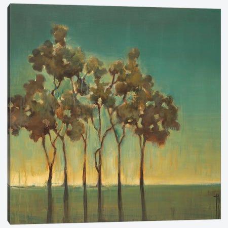 Arbor Grove Canvas Print #TBU28} by Terri Burris Art Print