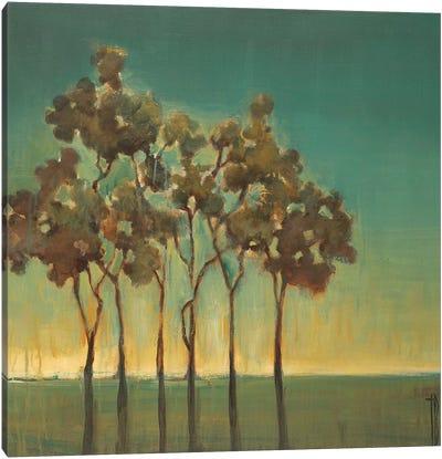 Arbor Grove Canvas Art Print