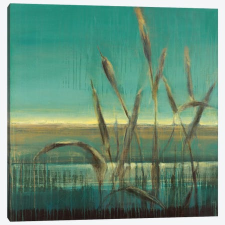 Cattails Canvas Print #TBU46} by Terri Burris Canvas Art