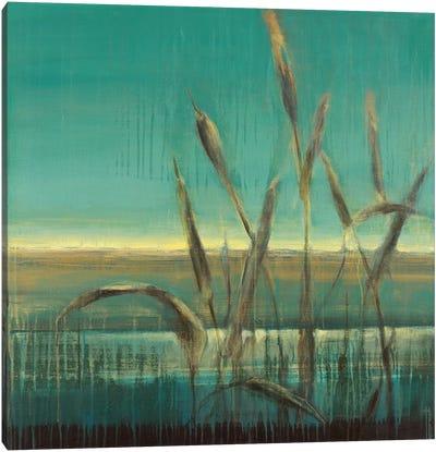 Cattails Canvas Art Print