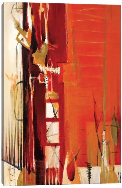Climb the Ladder Canvas Art Print