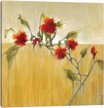 Hibiscus Blooms  Canvas Art Print