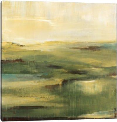 Moss Hill Canvas Art Print