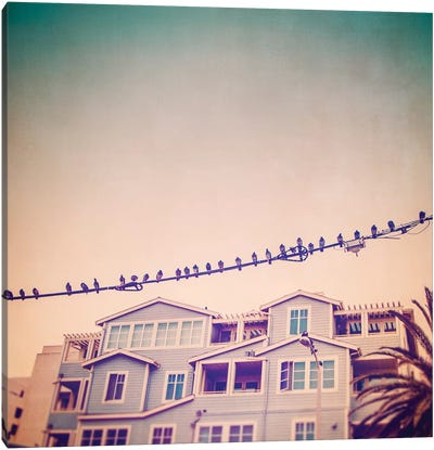 Birds on Wires I Canvas Art Print