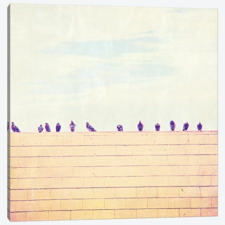 Birds on Wires III Canvas Print #TBW3} by Thomas Brown Canvas Art Print