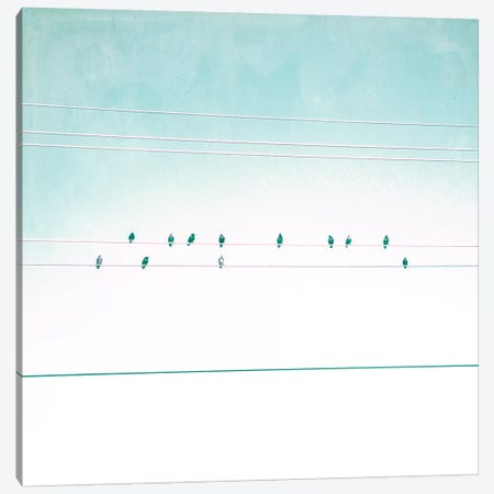 Birds on Wires IV Canvas Print #TBW4} by Thomas Brown Canvas Wall Art