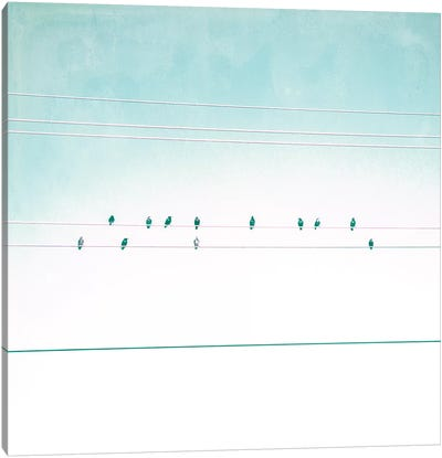 Birds on Wires IV Canvas Art Print