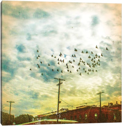 Birds on Wires V Canvas Art Print