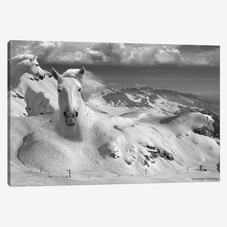 Icy Studs Canvas Print #TBY11} by Thomas Barbey Canvas Art