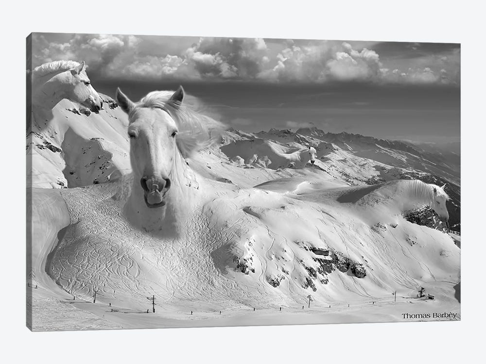 Icy Studs by Thomas Barbey 1-piece Canvas Art Print