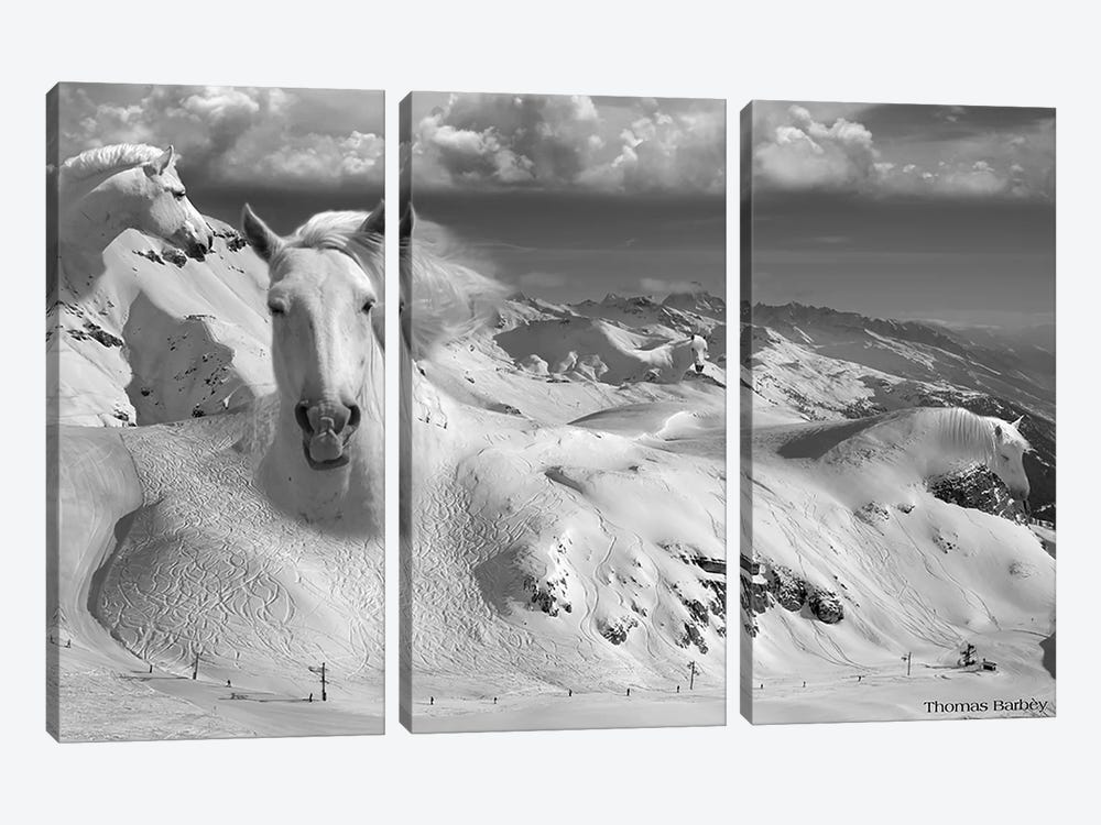 Icy Studs 3-piece Canvas Print
