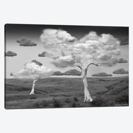 Natural Disorder Canvas Print #TBY13} by Thomas Barbey Canvas Artwork
