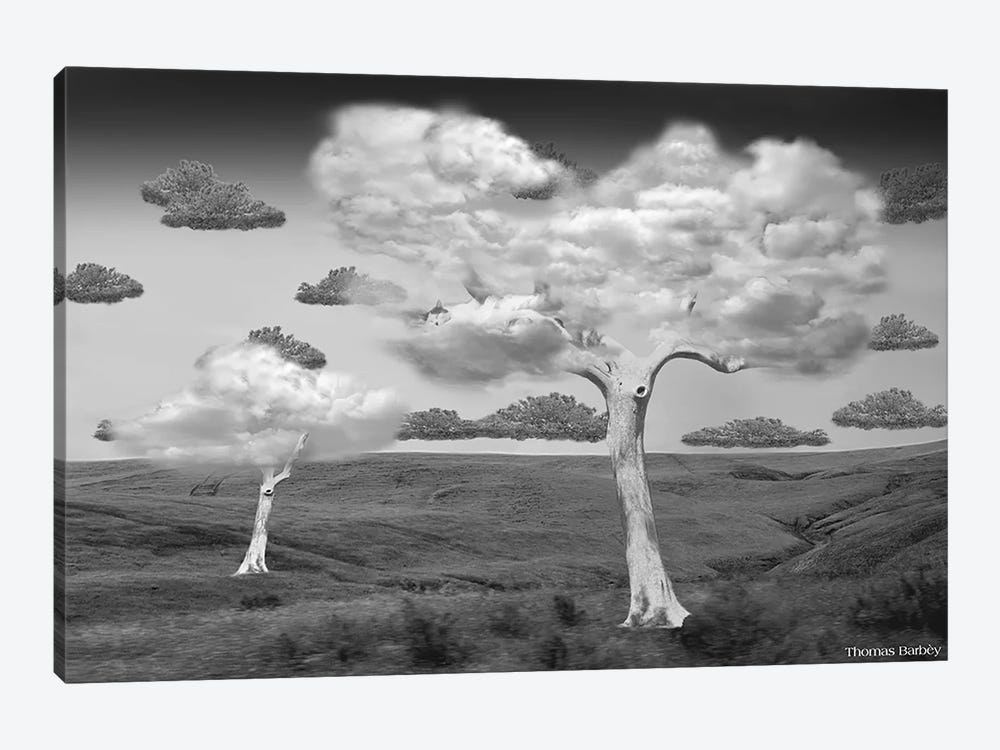 Natural Disorder by Thomas Barbey 1-piece Canvas Print