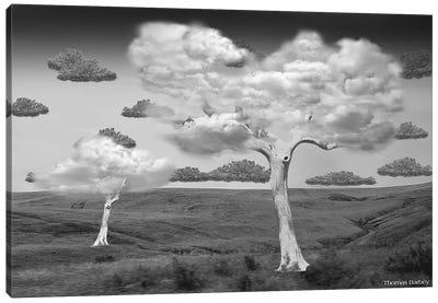 Natural Disorder Canvas Art Print