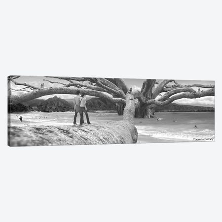 Nut Tree Canvas Print #TBY14} by Thomas Barbey Canvas Art Print