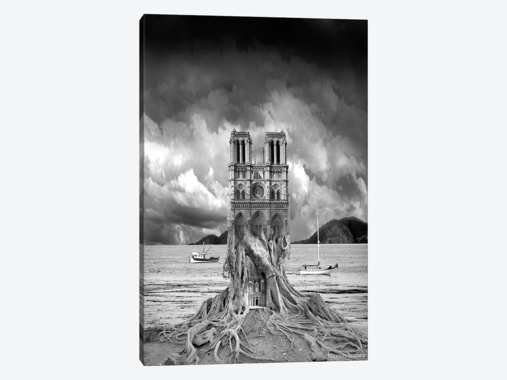 Stumped by Thomas Barbey 1-piece Canvas Artwork