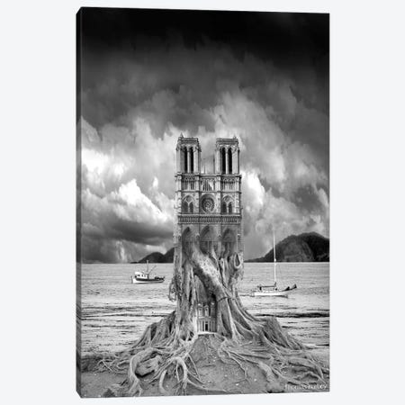Stumped Canvas Print #TBY23} by Thomas Barbey Canvas Print
