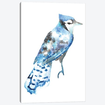 Cosmic Blue Jay Canvas Print #TCA11} by Tanya Casteel Canvas Art Print