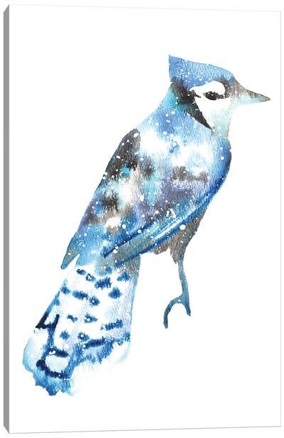 Cosmic Blue Jay Canvas Art Print