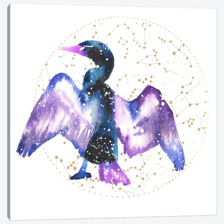 Cosmic Cormorant Canvas Print #TCA19} by Tanya Casteel Art Print
