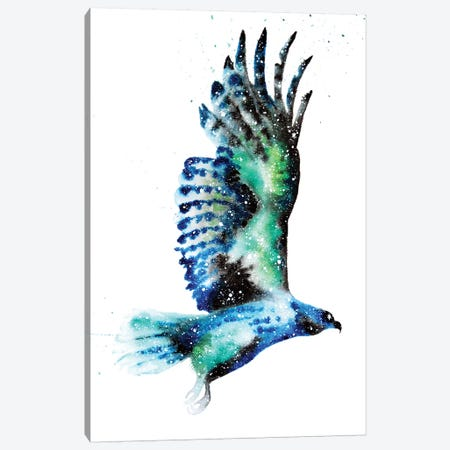 Cosmic Hawk Canvas Print #TCA36} by Tanya Casteel Canvas Artwork