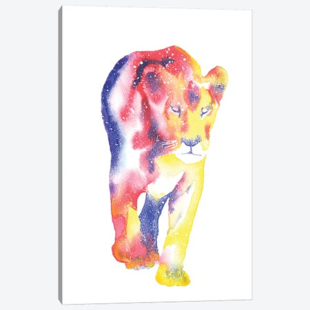 Cosmic Lioness Canvas Print #TCA47} by Tanya Casteel Canvas Art Print