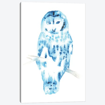 Cosmic Barred Owl Canvas Print #TCA4} by Tanya Casteel Canvas Wall Art