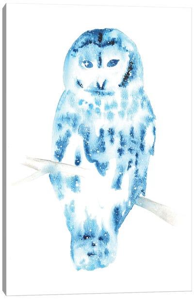 Cosmic Barred Owl Canvas Art Print