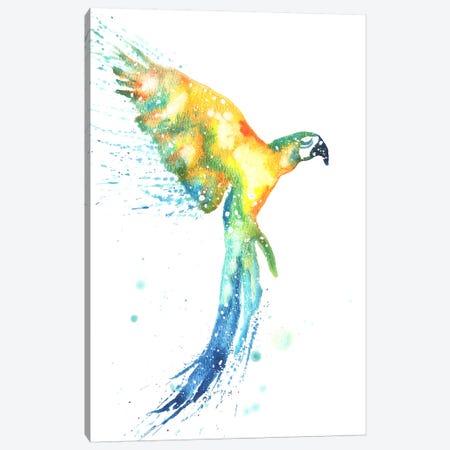 Cosmic Macaw Canvas Print #TCA50} by Tanya Casteel Canvas Art Print